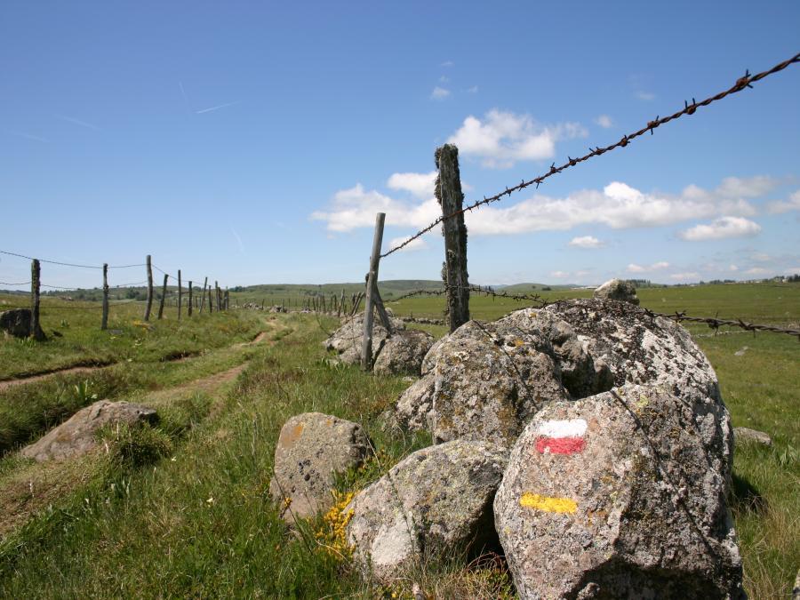 Sentier à Aumont-Aubrac (Lozère)